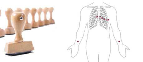 Anatomiestempel Beispiel